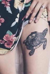 龟纹身 多款黑灰纹身点刺技巧龟纹身图案