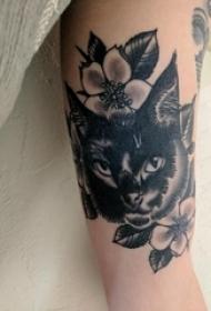 小清新猫咪纹身 女生手臂上猫咪纹身图案