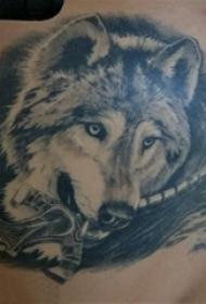 后背纹身线条 男生后背上剑和狼纹身图片