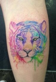 小腿对称纹身 女生小腿上彩色的狮子纹身图片