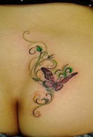 优美艺术蝴蝶纹身