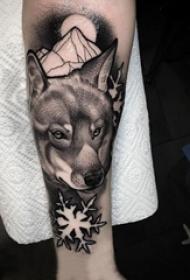 狐狸纹身图片 男生手臂上雪花和狐狸纹身图片