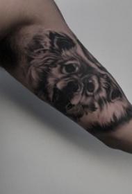 纹身点刺技巧 男生手臂上黑色的狼纹身图片