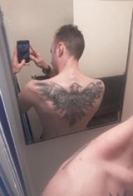 纹身老鹰图案 男生背部动物纹身老鹰图案