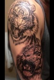 老虎图腾纹身 男生手臂上老虎纹身图案