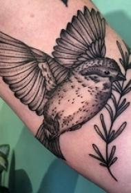 手臂纹身素材 男生手臂上植物和鸟纹身图片