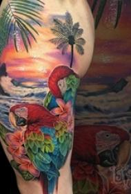大臂纹身图 男生大臂上鹦鹉和风景纹身图片