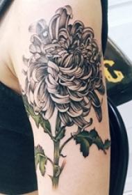 黑灰菊花纹身 女生手臂上黑灰菊花纹身图片