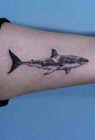 鲨鱼纹身图 男生大臂上黑色的鲨鱼纹身图片