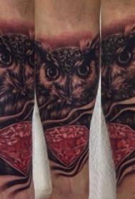 纹身猫头鹰 男生手臂上素描纹身猫头鹰图案