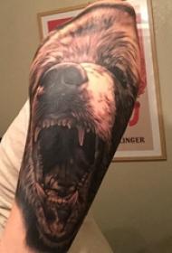 熊纹身 男生手臂上熊纹身动物图片