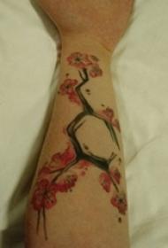 手臂纹身素材 女生手臂上化学元素和樱花纹身图片