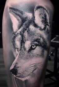 狼纹身 男生小腿上狼纹身动物纹身图片