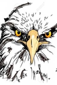 老鹰纹身手稿 多款简单线条纹身动物老鹰纹身手稿