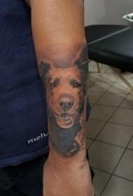 百乐动物纹身 男生手臂上黑色的狗熊纹身图片