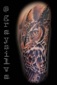 纹身猫头鹰 男生大腿上猫头鹰欧美纹身图片