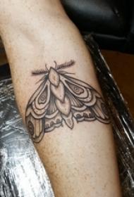 蝴蝶图腾纹身图案 女生手臂上蝴蝶纹身图片