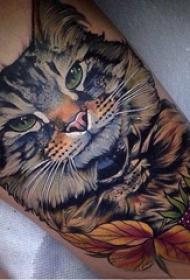 小猫咪纹身 女生小腿上猫咪纹身图案