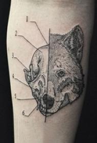 欧美抽象纹身 多款简单线条纹身欧美抽象纹身图案