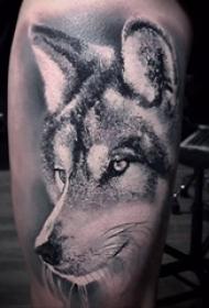 狼纹身 男生小腿上狼头纹身图案