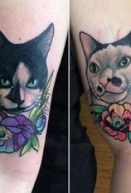 猫咪纹身简单 男生手臂上小猫咪纹身图片