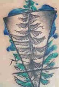 植物纹身 女生后背上彩色的大树纹身图片