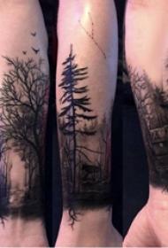 手臂纹身素材 男生手臂上建筑物和大树纹身图片