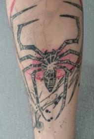 蜘蛛纹身 男内行臂上蜘蛛纹身图片