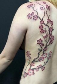 纹身后背女 女生后背上彩色的樱花树纹身图片