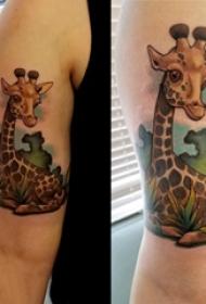 双大臂纹身 男生大臂上植物和长颈鹿纹身图片