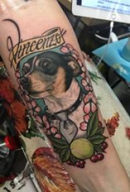 百乐动物纹身 女生手臂上植物和小狗纹身图片