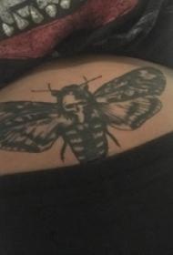 蝴蝶纹身图片 女生腹部蝴蝶纹身图片