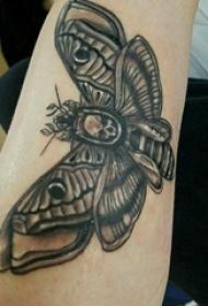 蝴蝶纹身图片 男生手臂上蝴蝶纹身图片