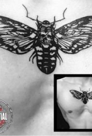 纹身胸部男 男生胸部骷髅和蝴蝶纹身图片