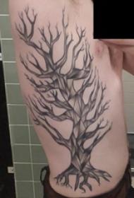纹身树枝 男生侧腰上黑色的枯树纹身图片