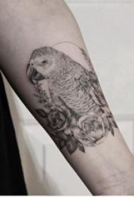 黑灰写实纹身 男生手臂上花朵和鹦鹉纹身图片