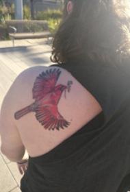 后肩纹身 女生后肩上彩色的小鸟纹身图片