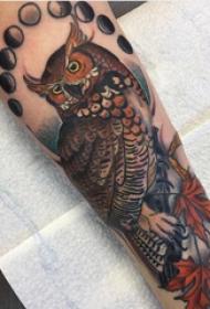 手臂纹身素材 男生手臂上叶子和猫头鹰纹身图片