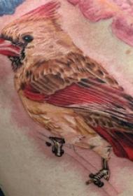 鸟纹身 男生背部鸟纹身图片