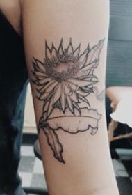手臂纹身素材 女生手臂上黑色的蓝星花纹身图片