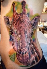 纹身侧腰男 男生侧腰上彩色的长颈鹿纹身图片