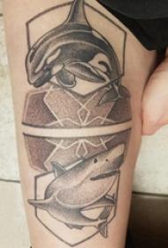 大臂纹身图 女生大臂上海豚和鲨鱼纹身图片