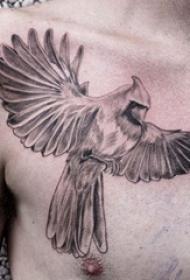 纹身胸部男 男生胸部黑色的鹦鹉纹身图片