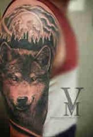 狼纹身 男生手臂上狼头纹身图案