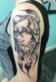 双大臂纹身 女生大臂上黑色的狼纹身图片