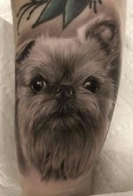 小狗纹身图片 女生小腿上黑色的小狗纹身图片