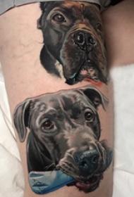 欧美小腿纹身 男生小腿上彩色的小狗纹身图片
