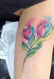 泼墨纹身素材 色彩纷呈的植物和动物纹身图案