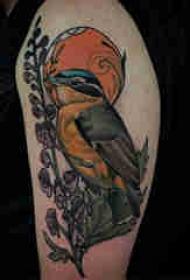 鸟纹身 男生手臂上鸟纹身百乐动物纹身图片