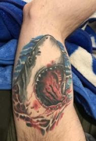 鯊魚紋身圖 男生大腿上鯊魚紋身圖片